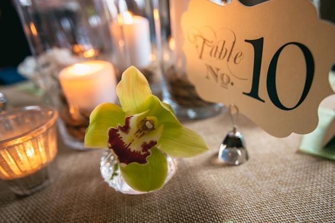 Charleston Weddings