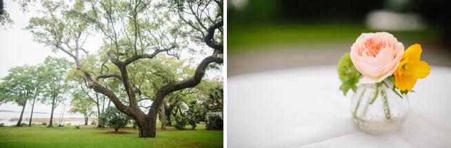 Charleston Weddings_0149.jpg