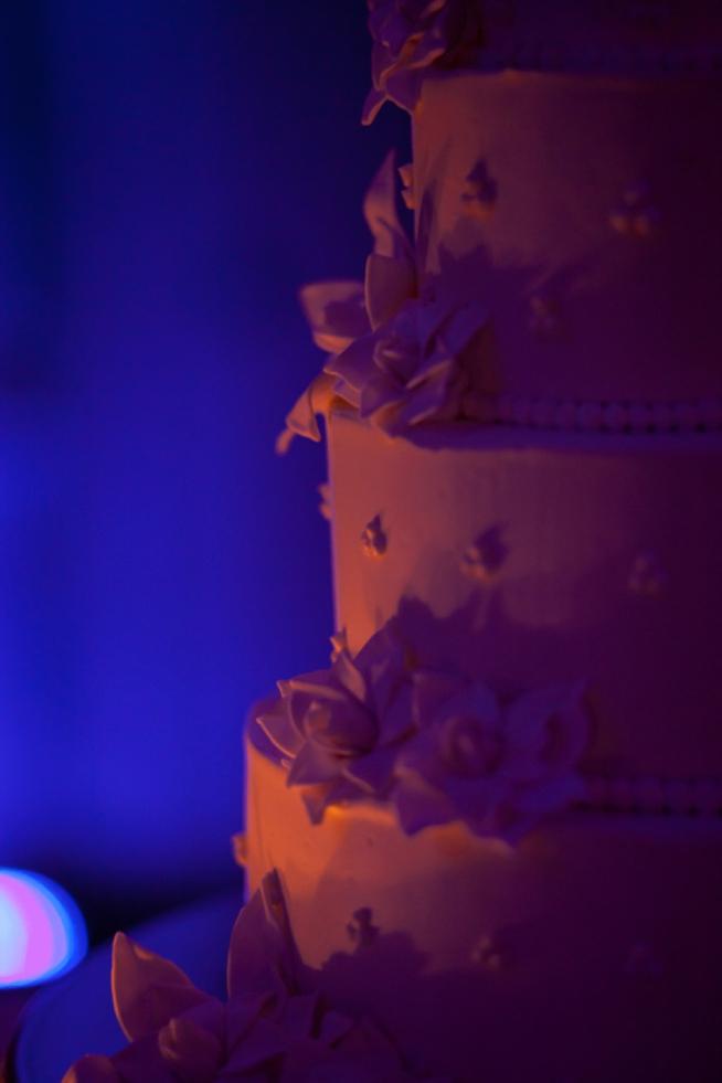 Real Charleston Weddings featured on The Wedding Row_0459.jpg