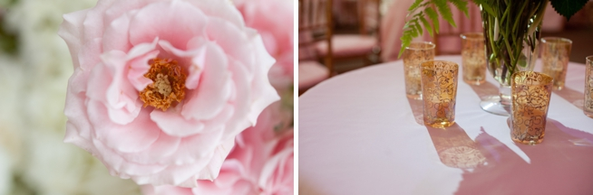 Real Charleston Weddings featured on The Wedding Row_0590.jpg