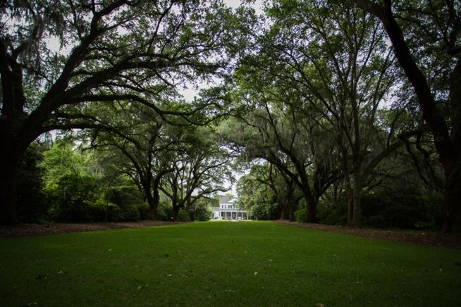 Charleston Weddings_0938.jpg