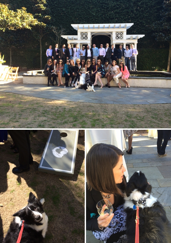 Charleston Weddings_1656.jpg