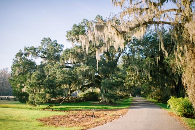 Charleston Weddings_3120.jpg