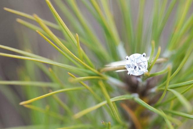 Charleston Weddings_3669.jpg