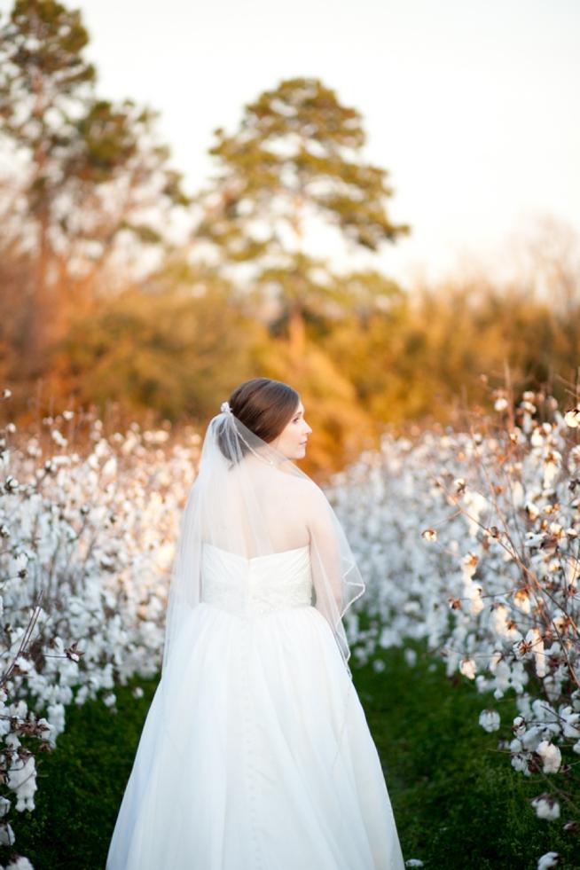 Charleston Weddings_5571.jpg