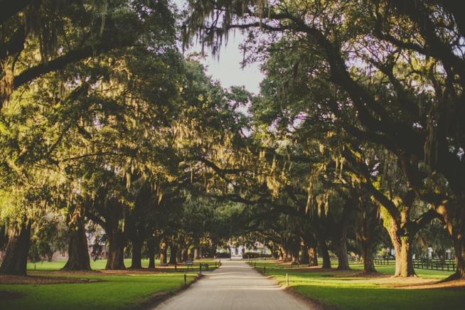 Charleston Weddings_7827.jpg
