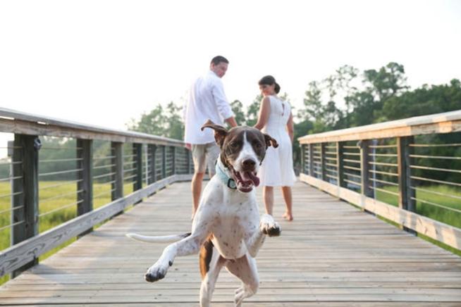 Charleston Weddings_1145.jpg