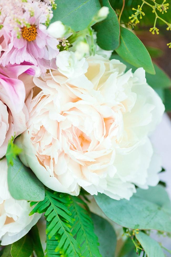 Molly & Caleb | Magnolia Plantation & Gardens - The ...